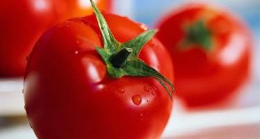 Синьор помидор в услужении. Томатный разгрузочный день