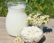Можно ли есть молочные продукты, если худеешь