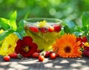 Рецепты травяных сборов для похудения