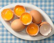 Похудение на желтках яиц